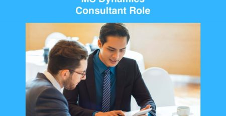 MS Dynamics Consultant Role
